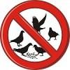 Combaterea păsărilor