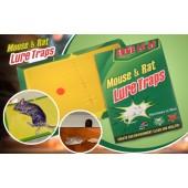 Capcană adezivă pentru șoareci 24/17 cm sau 2 separate 12/8 cm