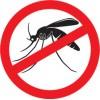 Combaterea ţânţarilor