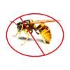 Combaterea viespilor și gărgăunilor