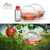 Capcane de viespi set de 2 buc. cu Atractant concentrat 100 de ml, Gardigo