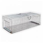 Capcană umană pentru porumbei și grauri 30x100x40