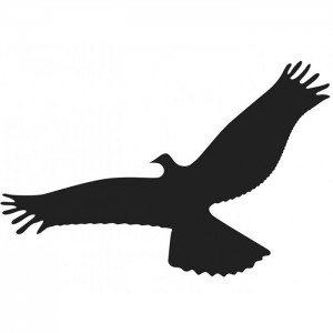 Autocolante anti-coliziune păsări – Dimensiuni 55Х25 CM