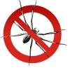 Combaterea păianjenilor