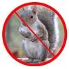 Aparate anti veverițele